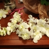 Wedding Headbands - White Orchid Flowers