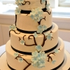 Fondant Floral Wedding Cake, Blue Flowers, Branches, Natural Light